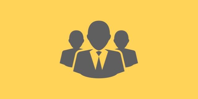 company profile (1)
